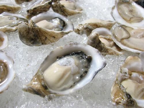 Fat, juicy, salty, and briny... just the way I like them.